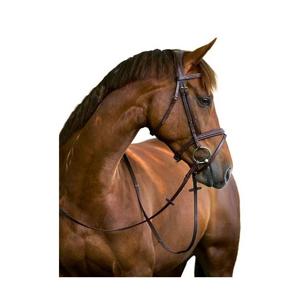filet cheval
