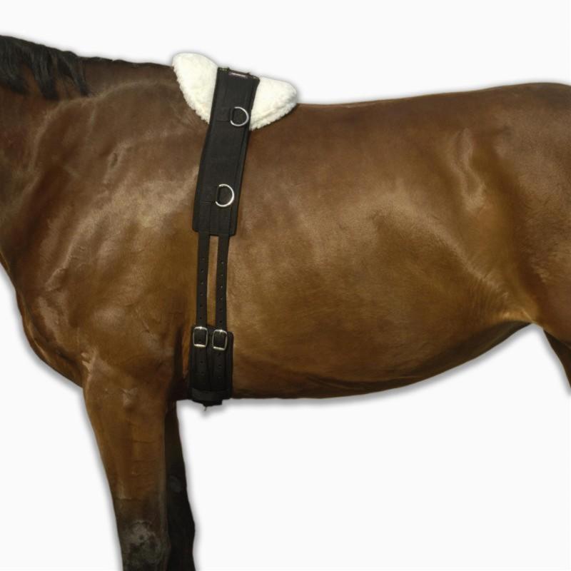 surfaix cheval