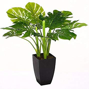 plante verte artificielle